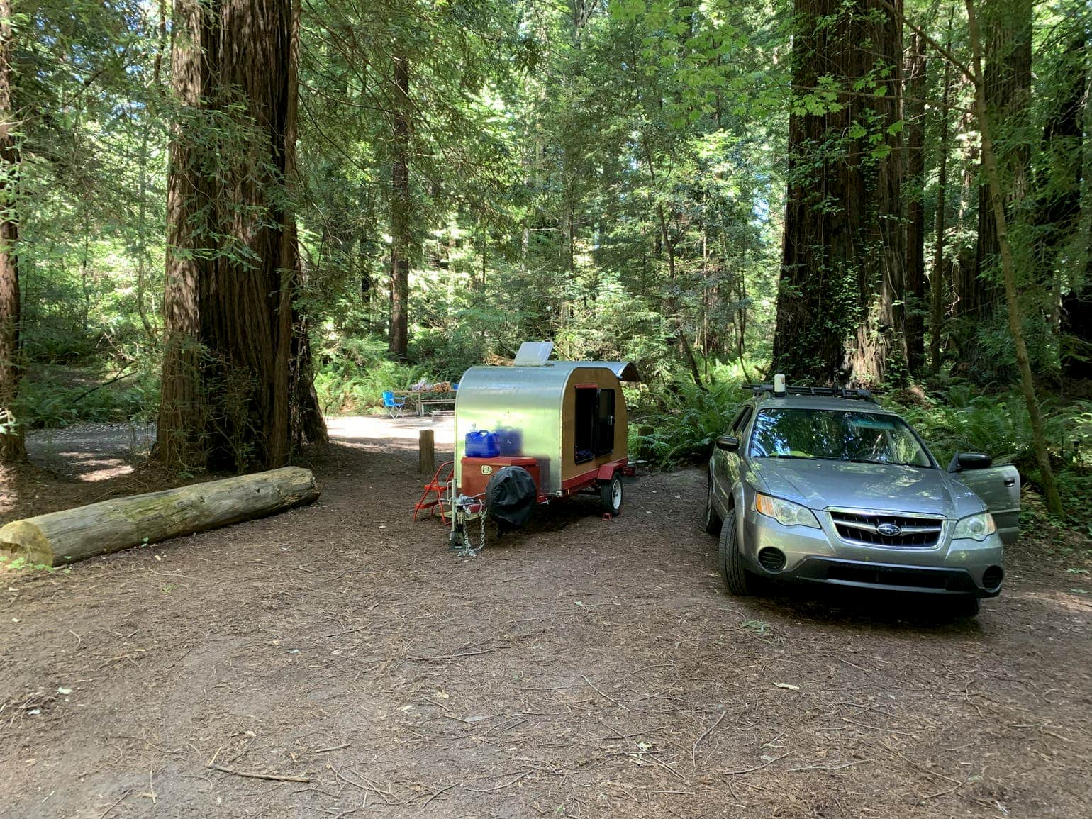 Teardrop trailer and car parked in campsite below an evergreen forest.