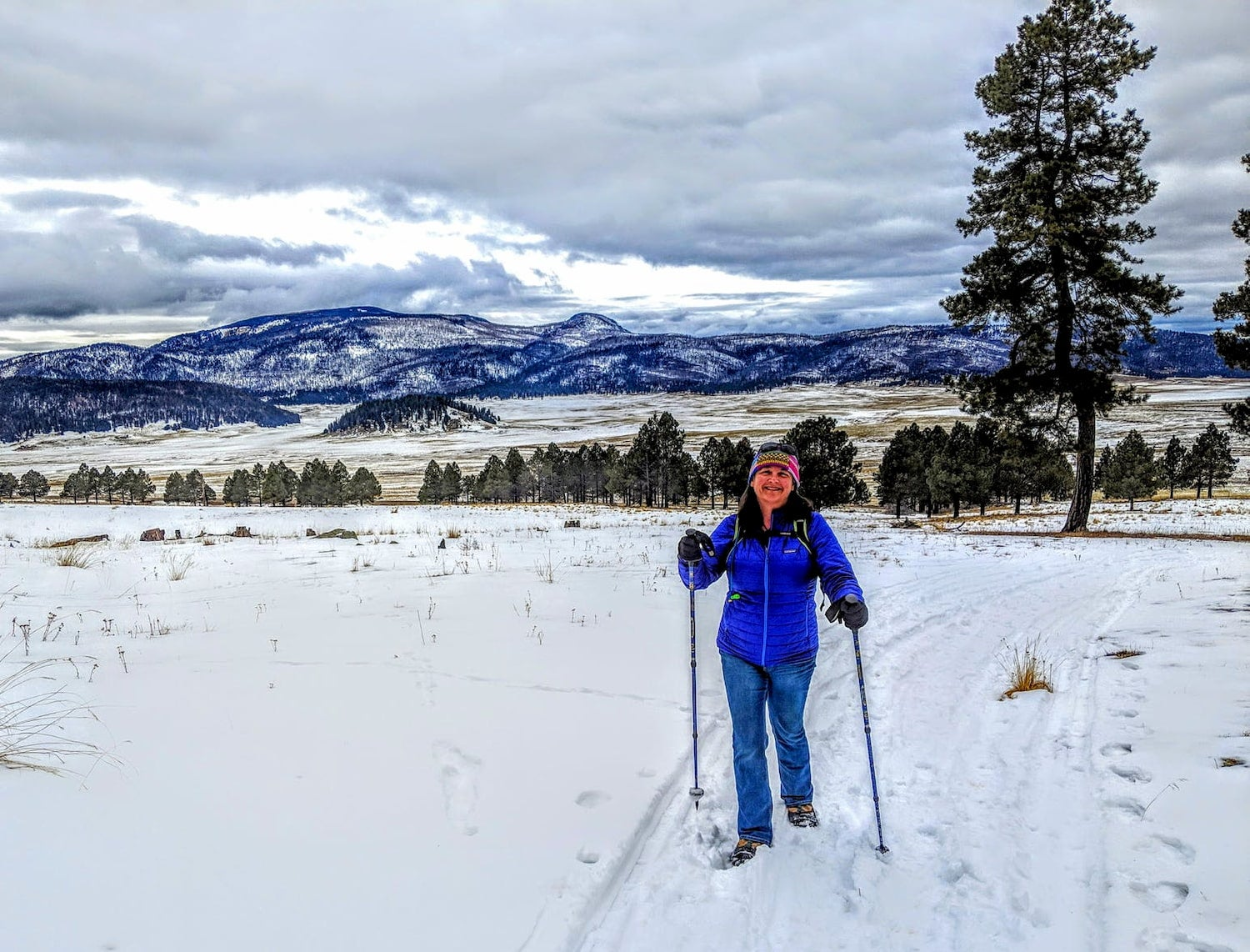 hiker with poles in snow with mountains in the background