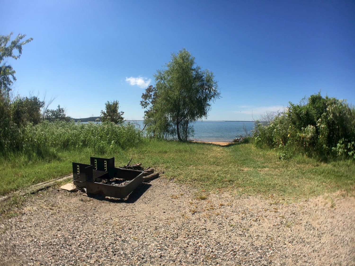grassy field and fire pit at campsite