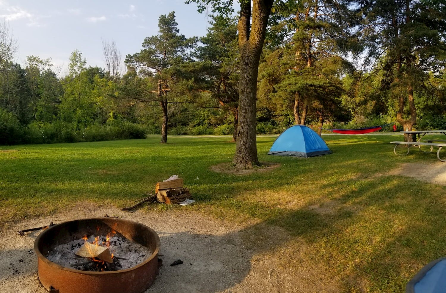 firepit, tent, and hammock set up in large park