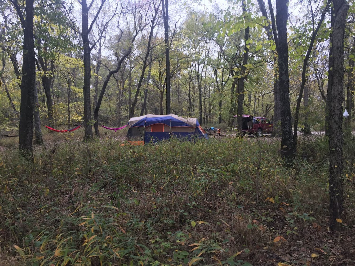 tent and hammocks set up in campsite in the forest