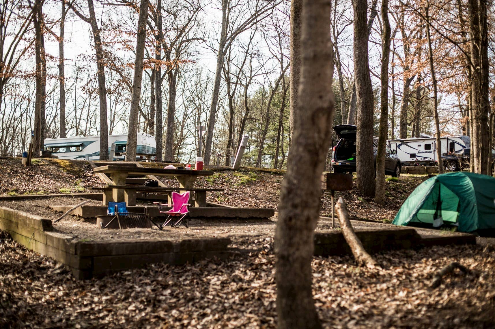 Wooded campground in autumn with a picnic table and RVs parked in the background.