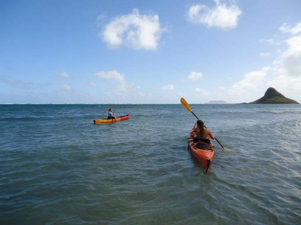 sea kayaks on the water