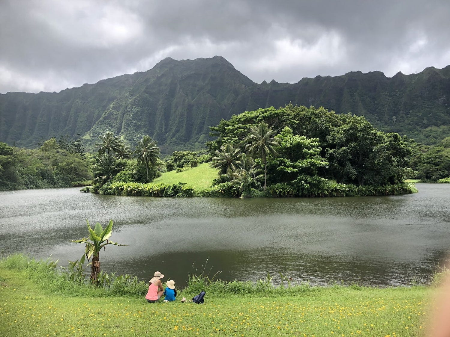 two people sitting on grass near the water