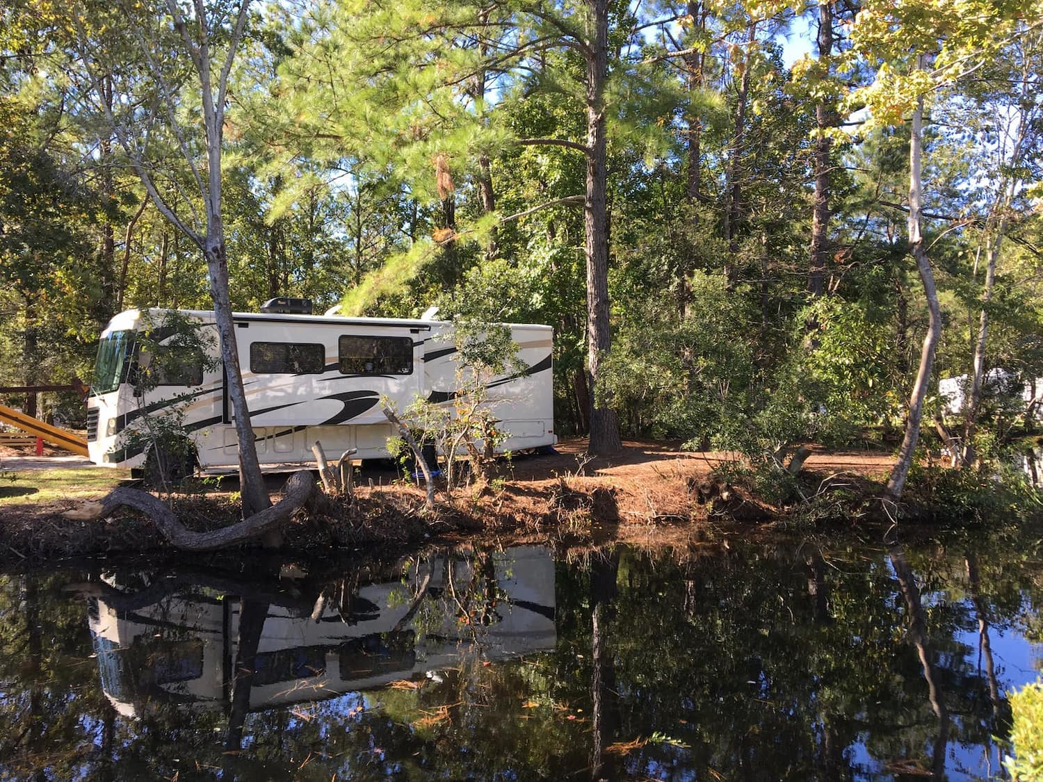 rv tucked into forested camp spot by the water