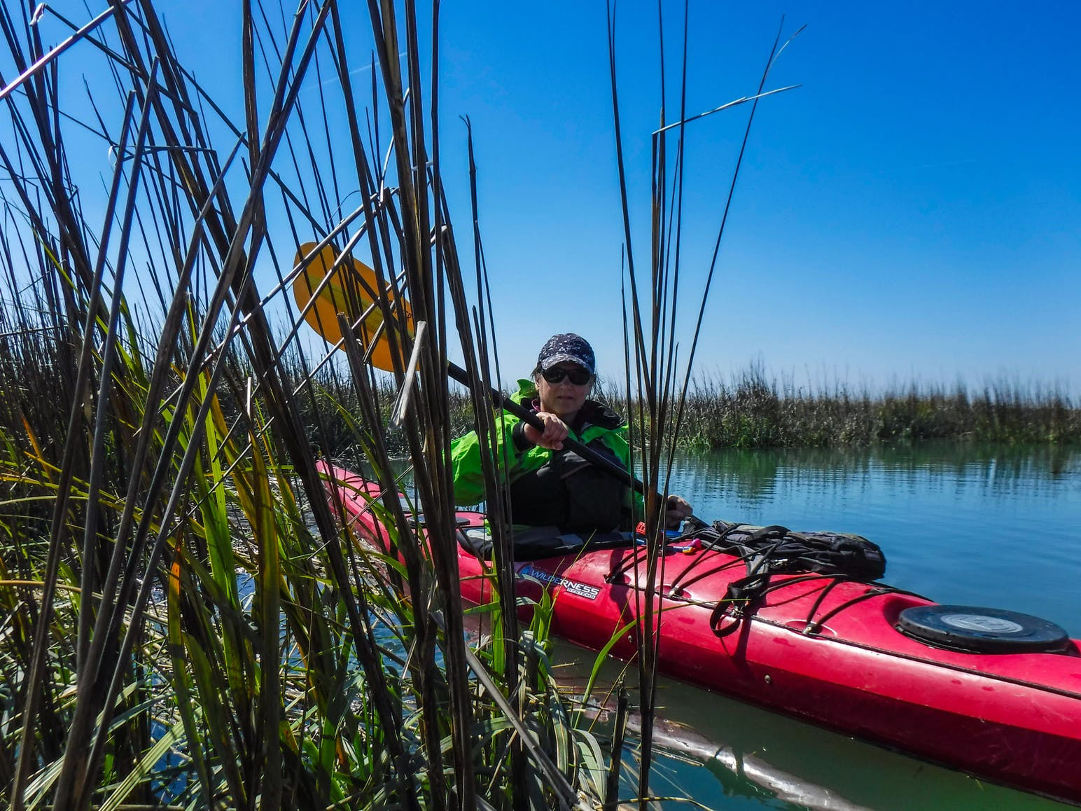 kayakers among the reeds