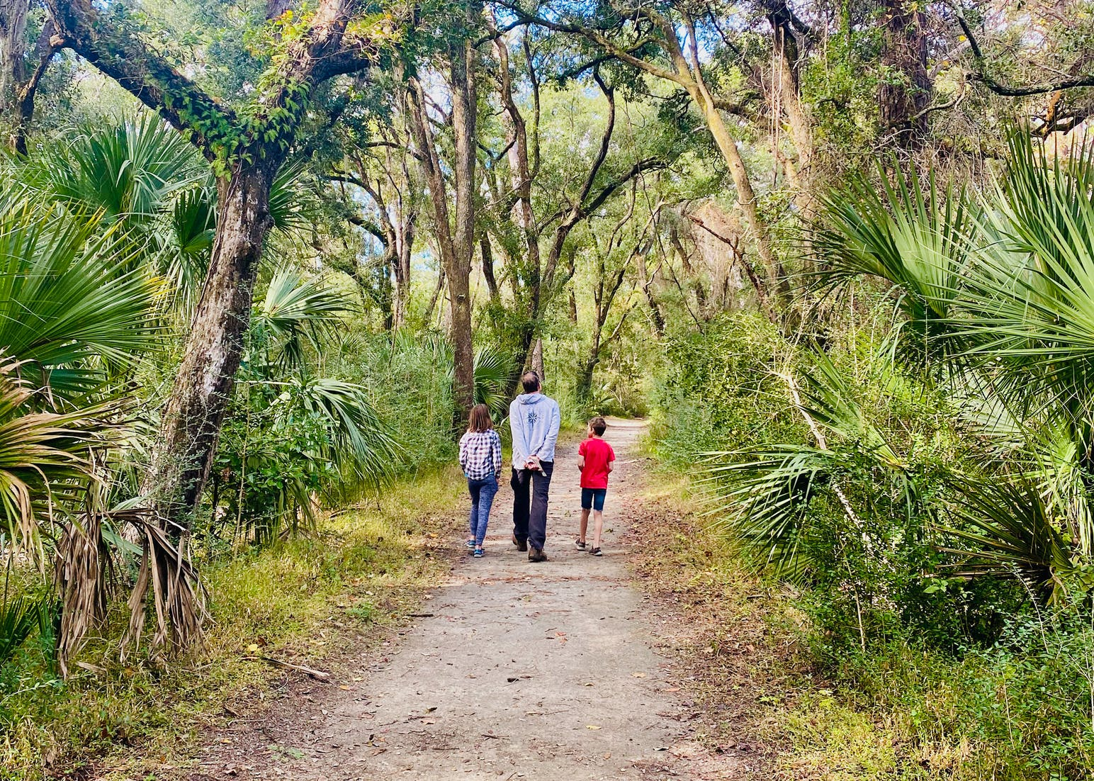 father and children walking along forested trail