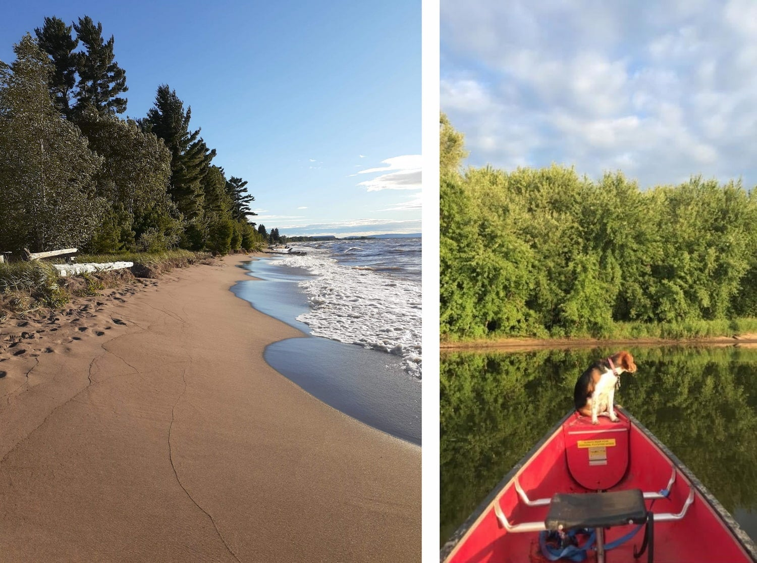 side by side images of beach and a dog on a kayak