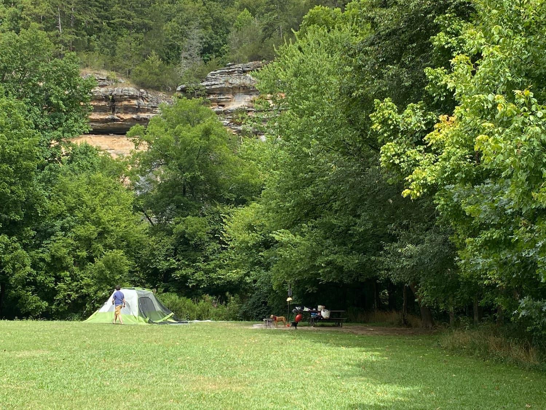 tent in green field