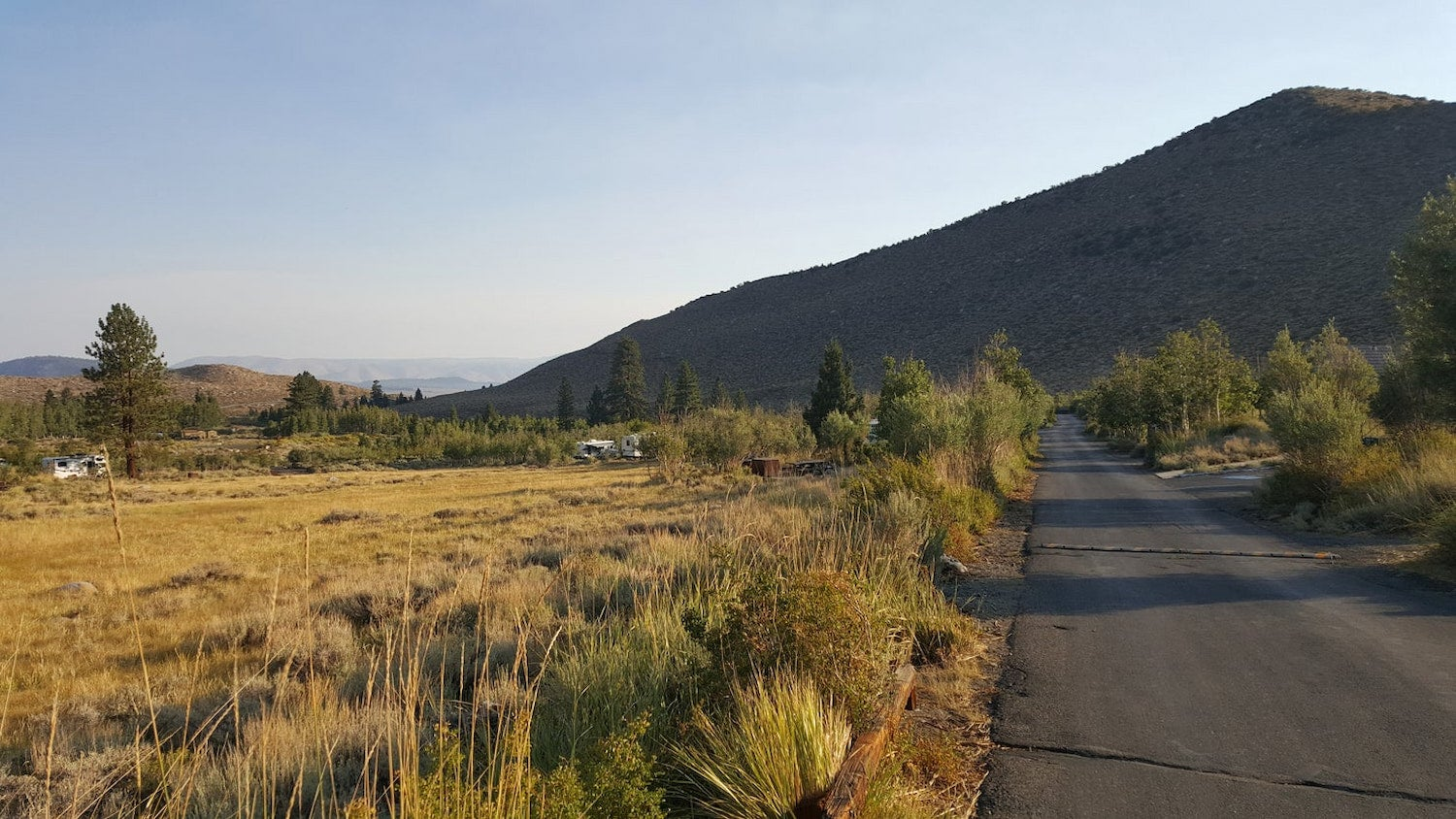 road to campsite with grasses at sunset