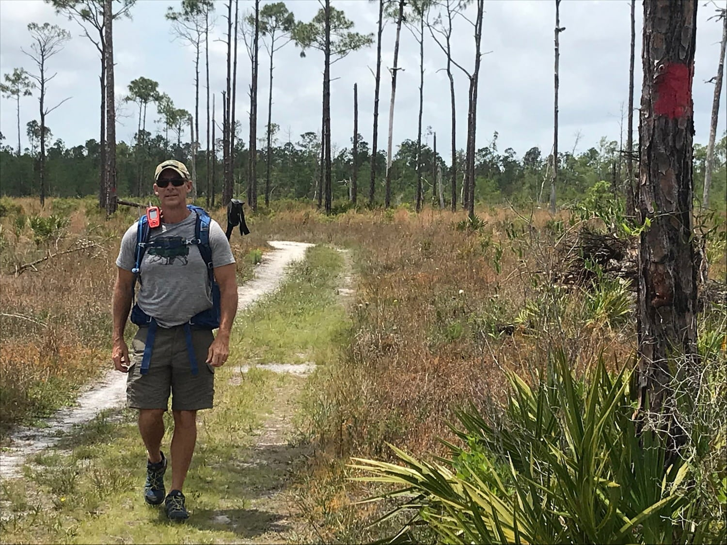 dave hiking on trail with palm trees in background