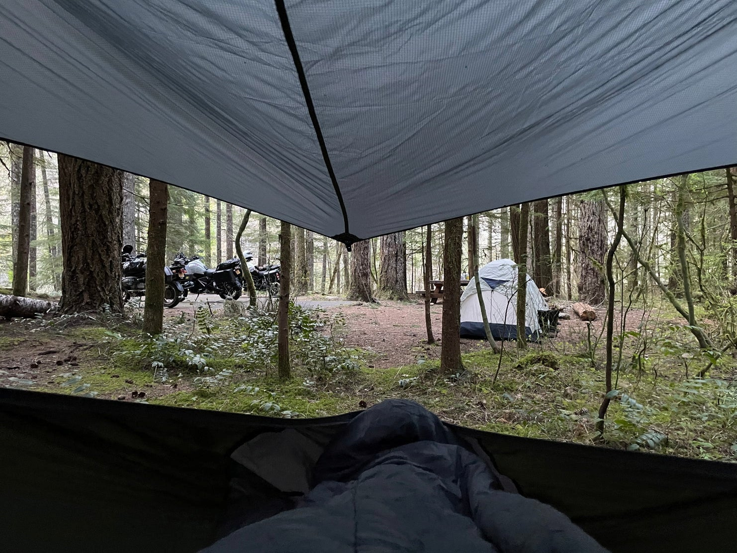 Photo through the hammock under a rainfly looking out at a tent in the forest at Mt. St. Helens.