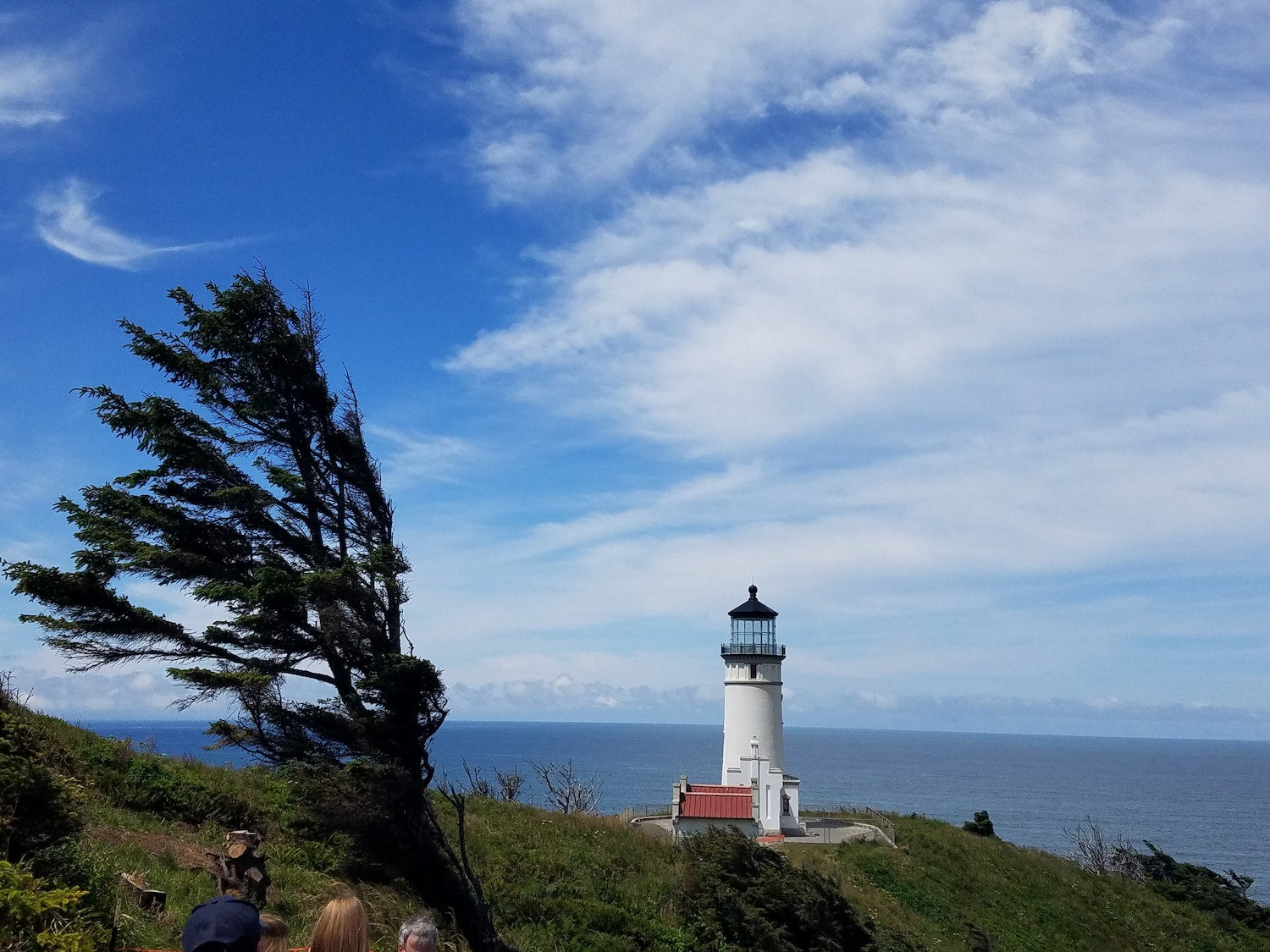 lighthouse and tree on ocean