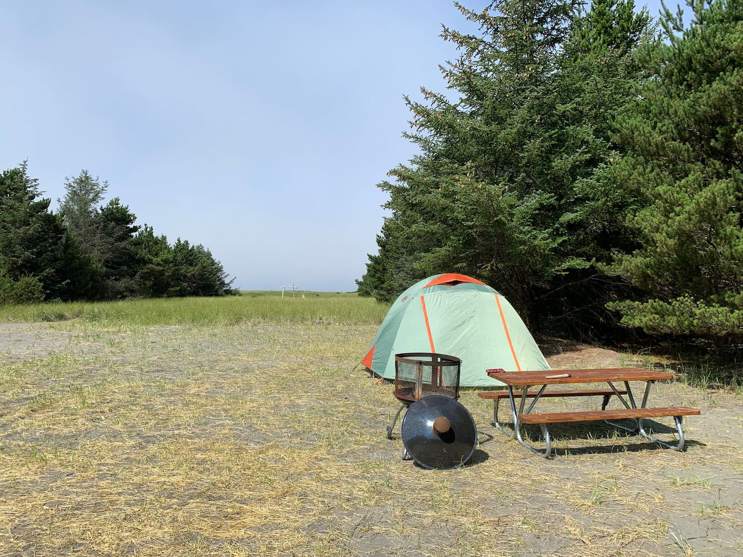 tent and picnic table in clearing of forest