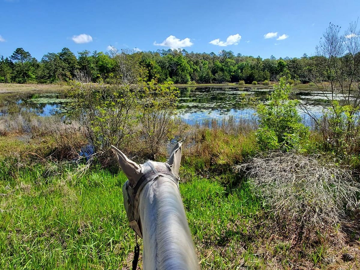 Photo from a person on horseback at a ranch campsite in Florida.