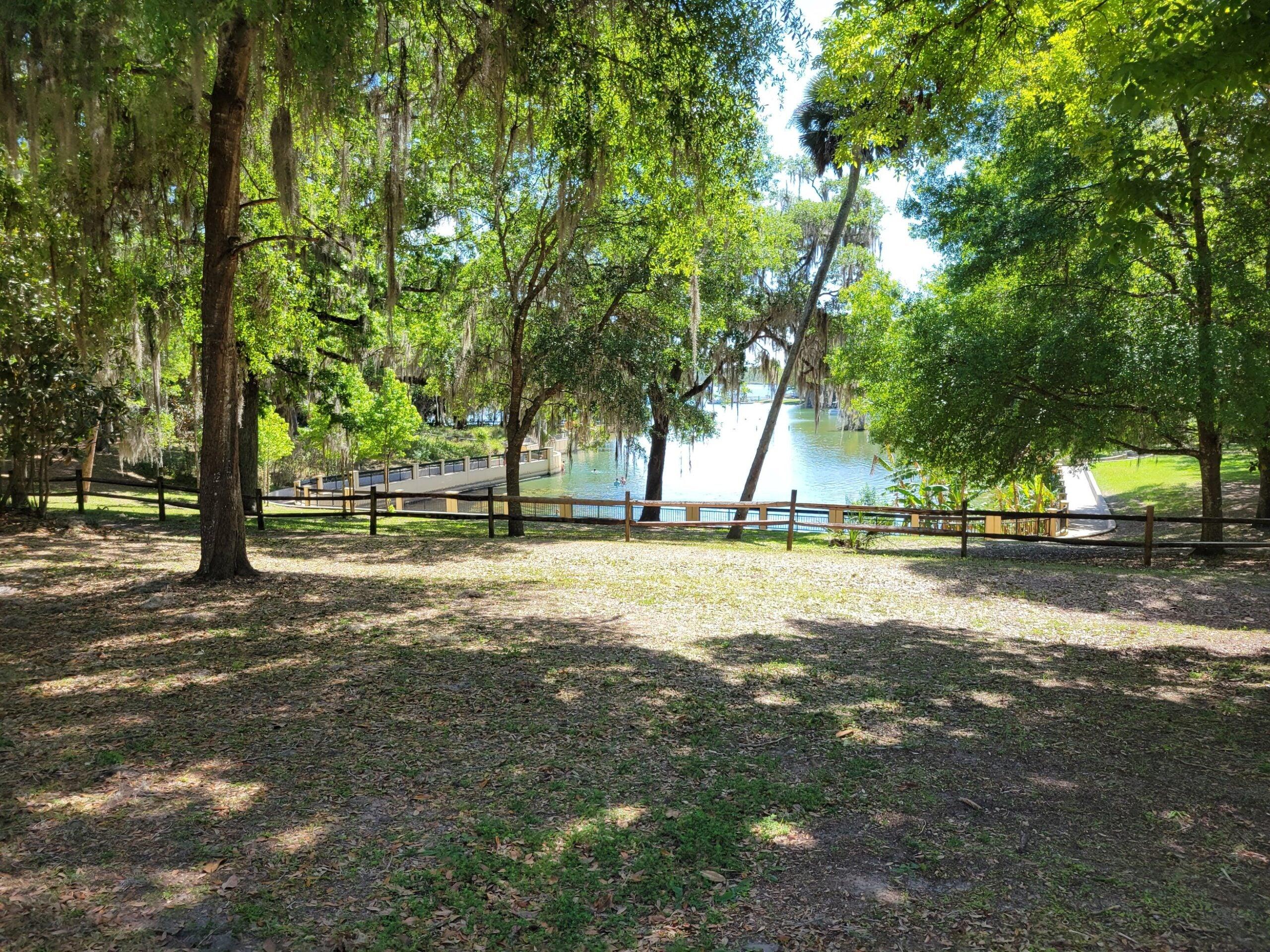 Florida Salt Springs campground.
