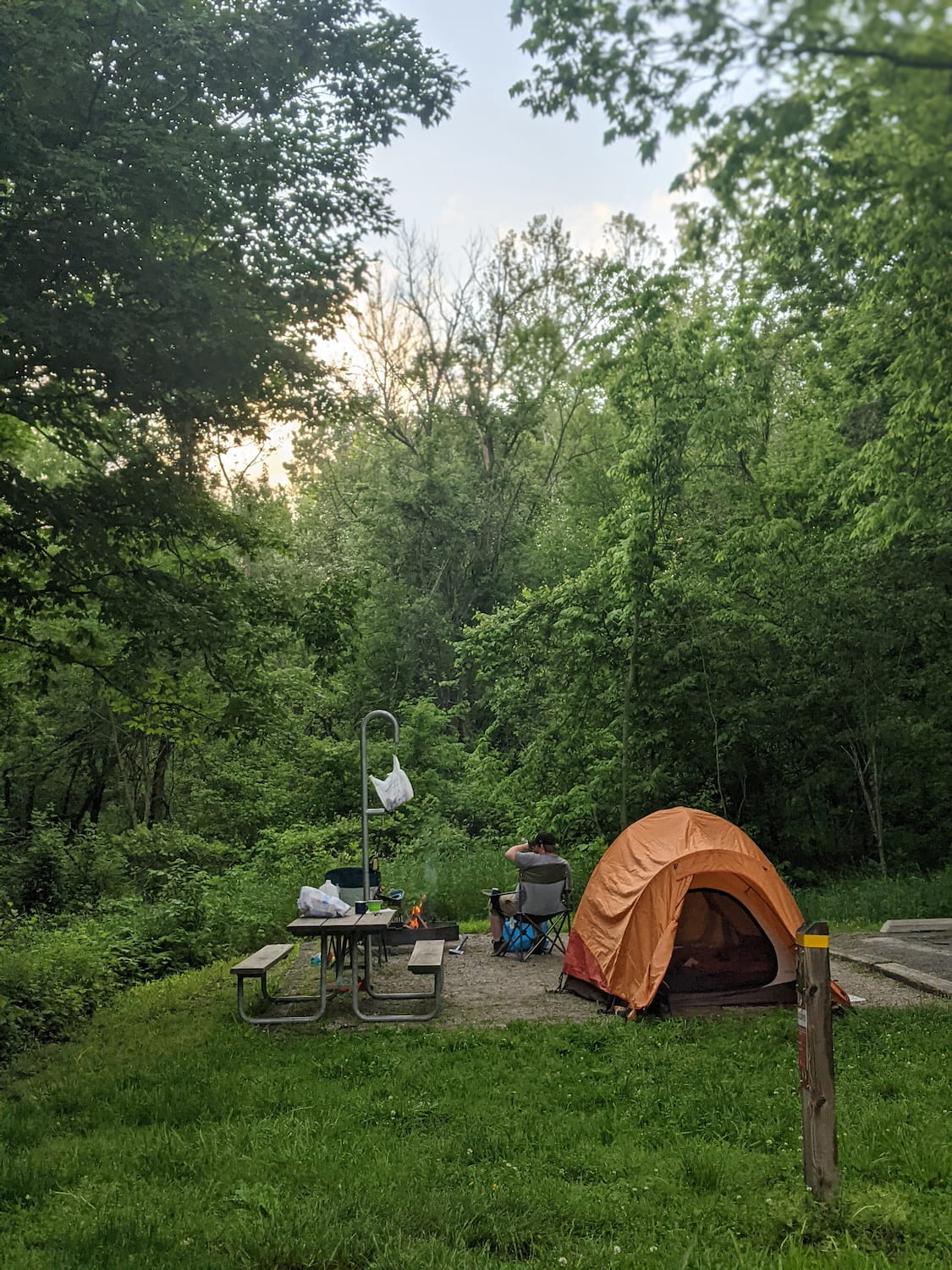Orange tent beside picnic table in lush forested campsite.