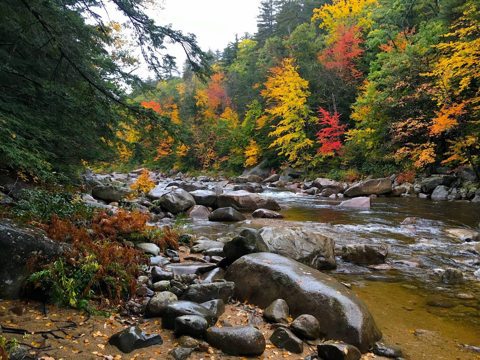 A river in New England with fall foliage.