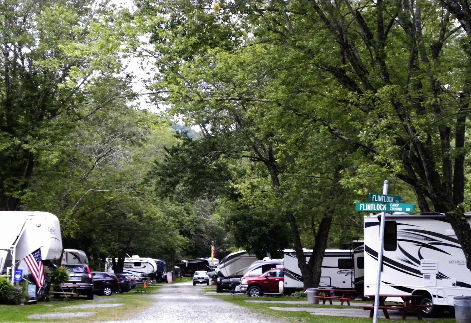 row of RVs parked at campsite