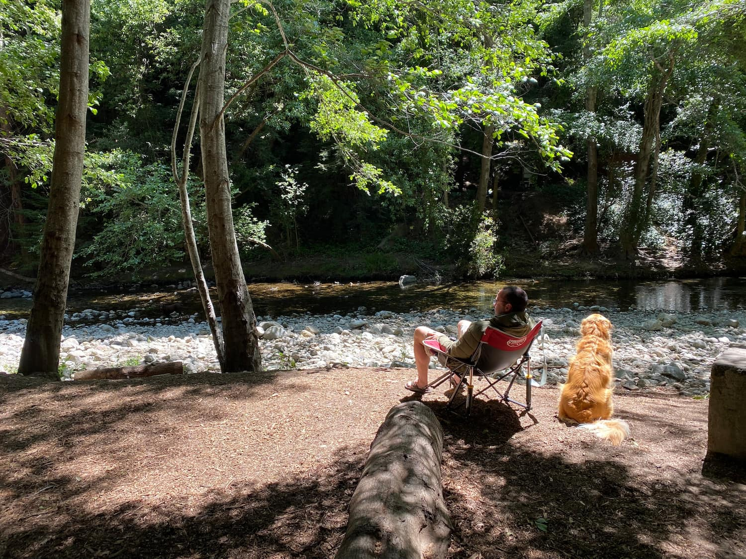 man and dog sitting by a river