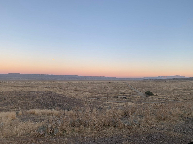 grass field at sunset