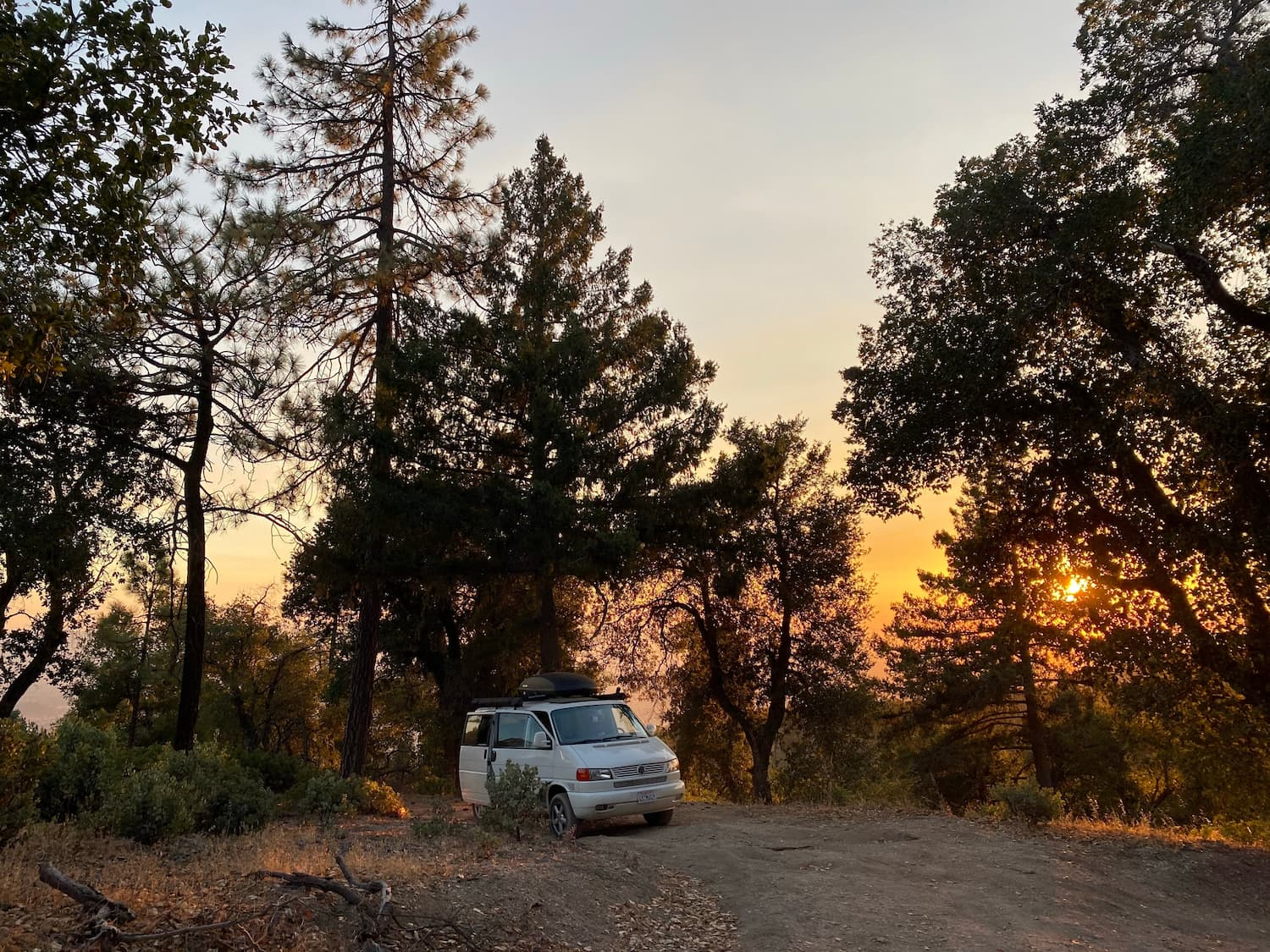 van parked in trees at sunset