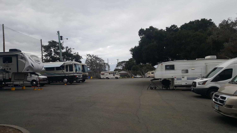 row of RVs parked at rv park