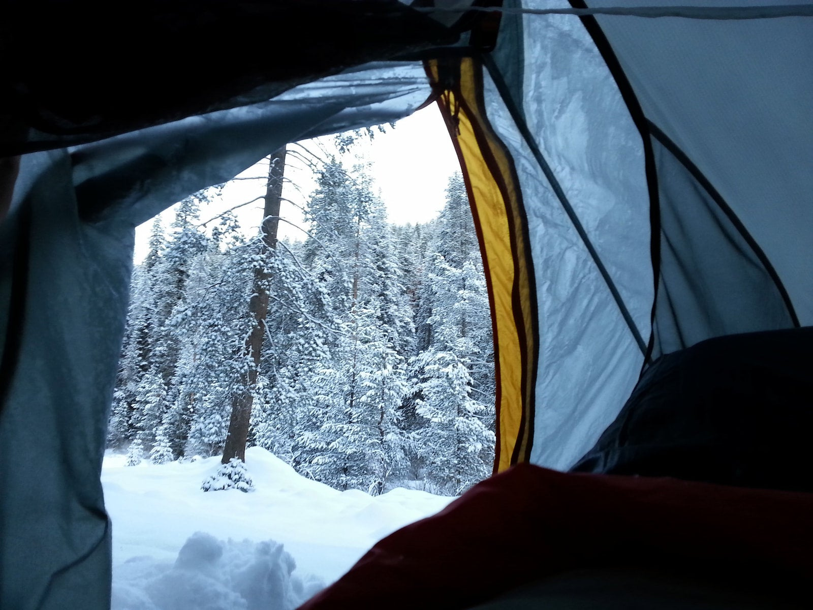 Snow covered landscape out the door of a tent.