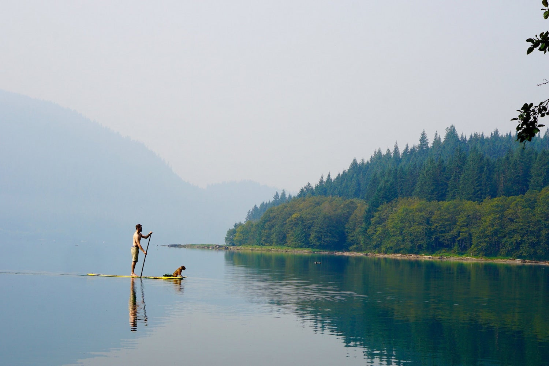 man SUPing with dog on lake