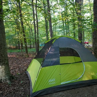 Experience Caves and History While Camping in Bowling Green, Kentucky