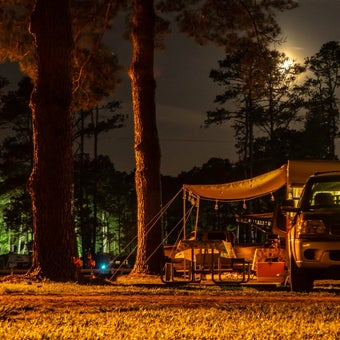 Cozy Up in These 7 Virginia Beach Camping Cabins
